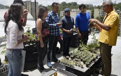Experiencia de huerto urbano de Metro Los Teques inspiró a trabajadores de CNTI