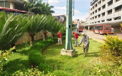 Trabajadores embellecen Jardín Terapéutico
